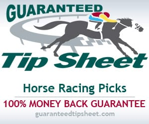 GTS Horse Picks