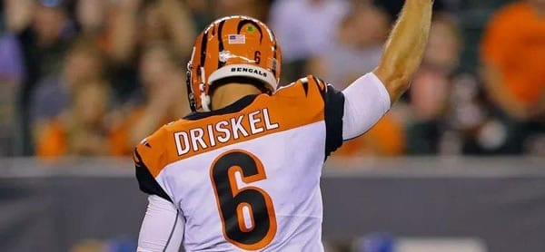 Jeff Driskel Bengals QB versus Pittsbugh Week 17