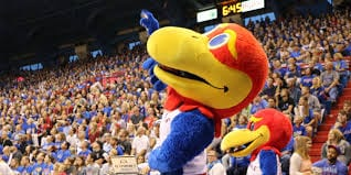 Kansas Basketball Jayhawk