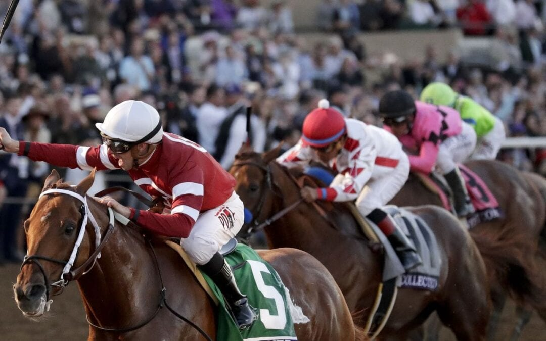 2019 Pegasus World Cup Picks
