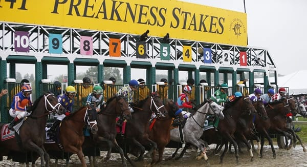 Preakness Stakes Picks 2019
