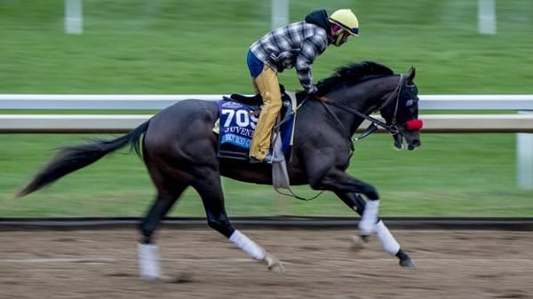 Louisiana Derby Race Analysis & Selections